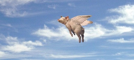 Look-flying-pigs-51794-e1315601783379.jpg